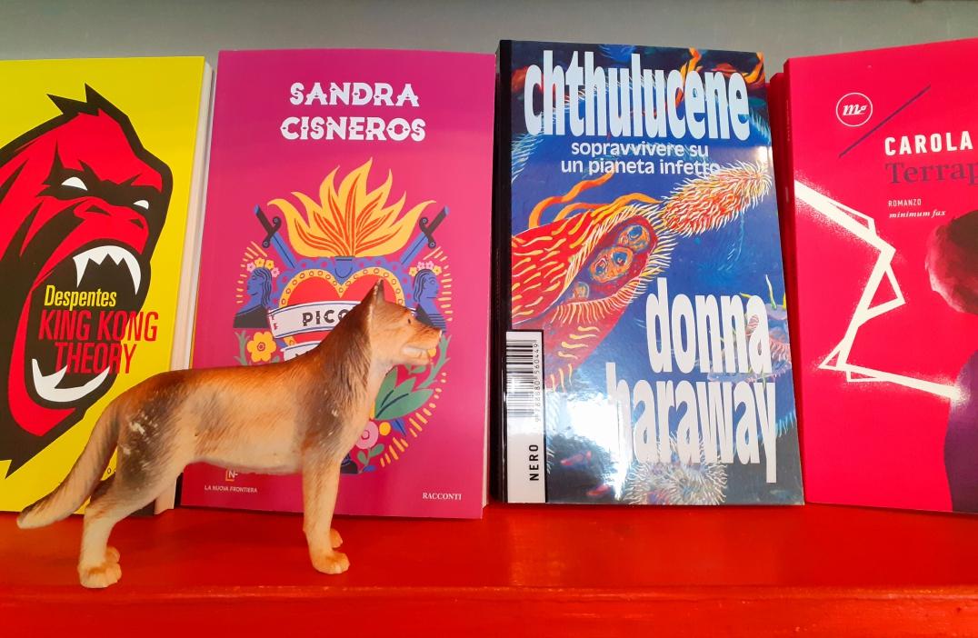Libreria MarcoPolo è tornata